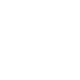 instagram-xxl icon