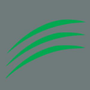 Springmount Favicon Icon clean